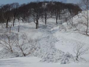 沢状地形の雪崩 アイキャッ