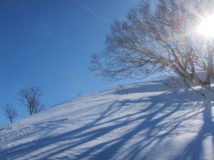 雛岳登りのルート アイキャ