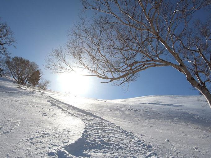 雛岳山頂のオープンバーンの