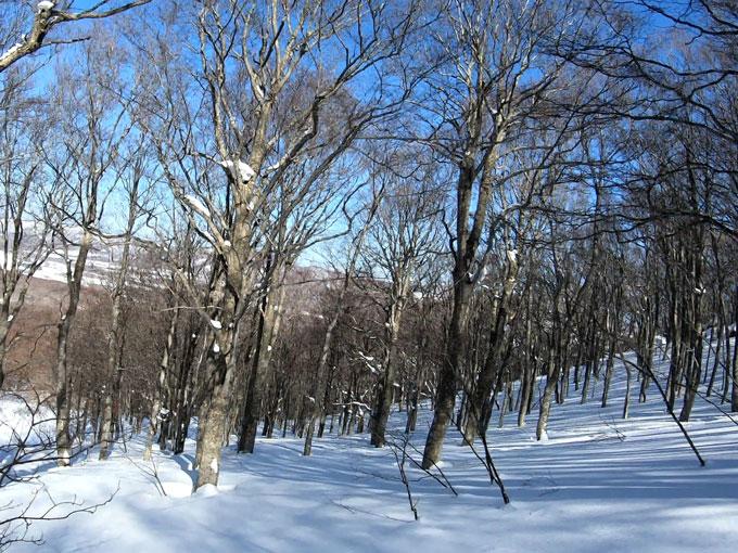 雛岳沢状地形の写真