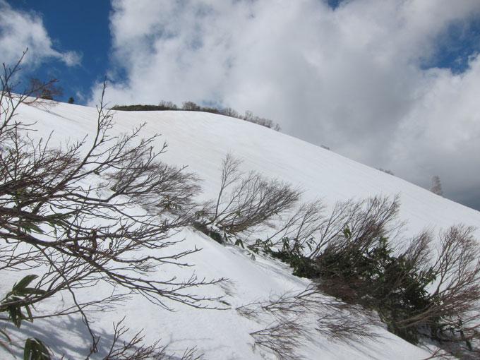 ゴールデンウィーク雛岳山頂