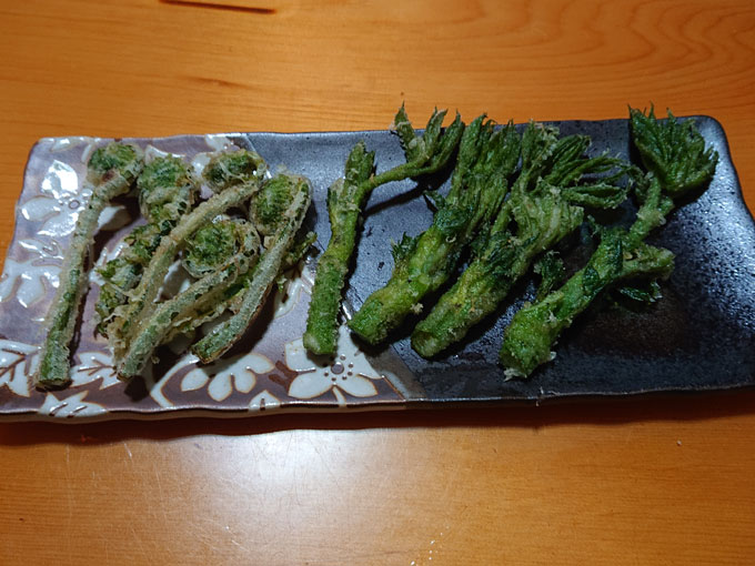 コゴミとウドの天ぷら